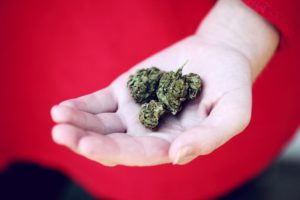 Cannabis Journaling