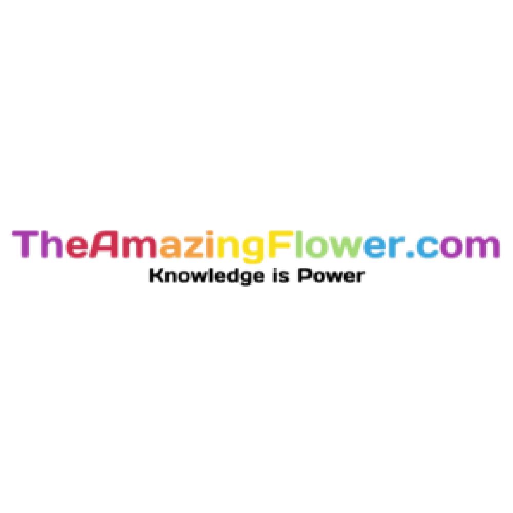 AmazingFlower_Logo